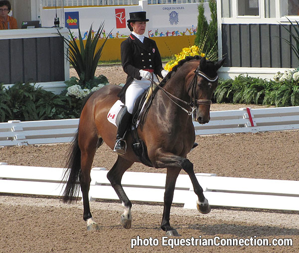Belinda Trussell Amp Anton Top Canadians In Dressage At
