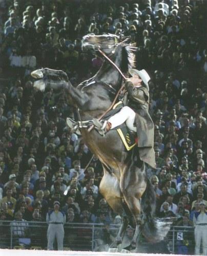 Steve Jefferys and Ammo - Sydney Olympics 2000
