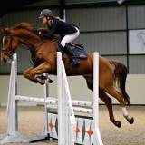 A Beginner's Guide to Indoor Jumping