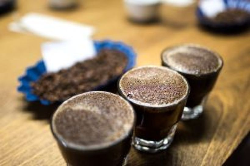Flight of Coffee cupped beans and name of coffee