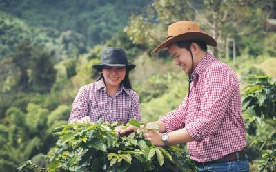 A Look at the Life of a Coffee Farmer