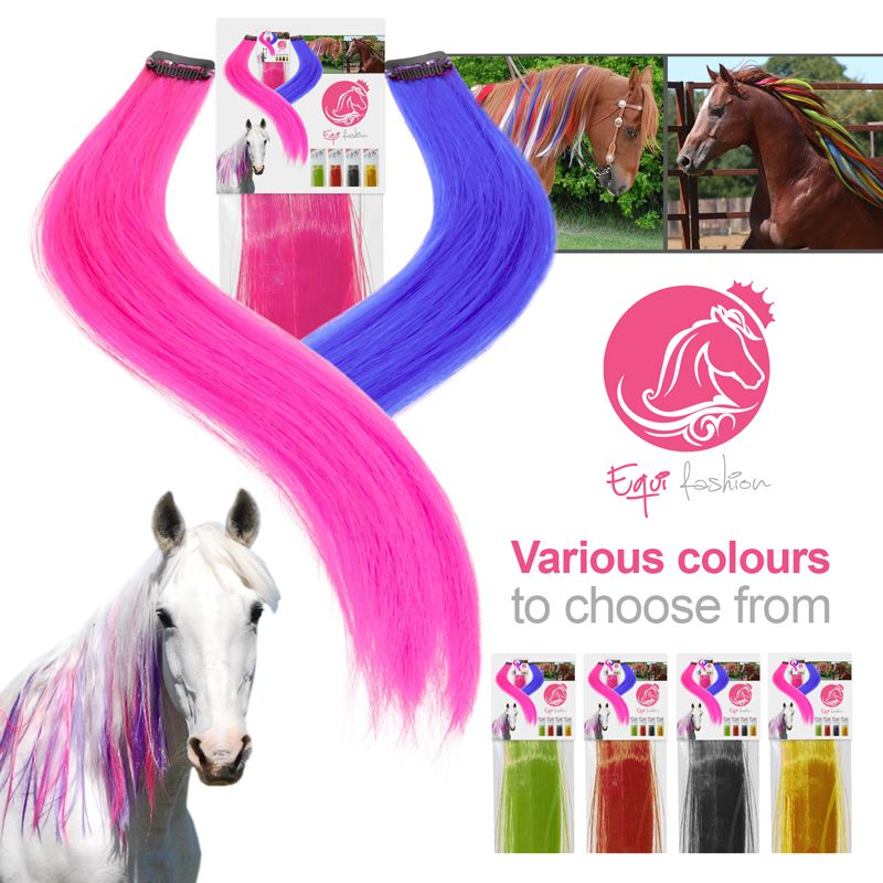 Equifashion Horse Mane Amp Tail Clip In Colour Extensions