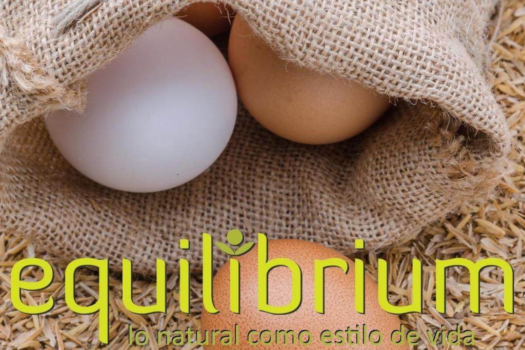 huevos organicos