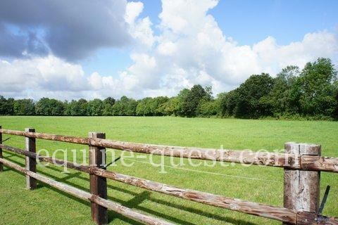 Normandy – Pays d'Auge area – Equestrian property witj high potential