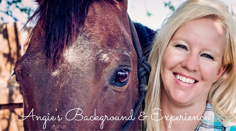 Equine Wellness Background