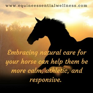 Equine Health Naturally