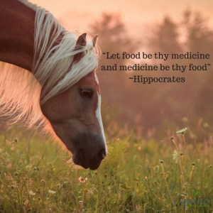 let-food-be-thy-medicine-and-medicine-be-thy-food-hippocrates