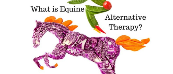 What is Equine Alternative Therapy