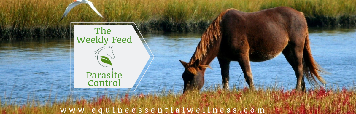 A Natural Approach to Parasite Control for Horses