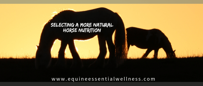 Selecting a More Natural Horse Nutrition