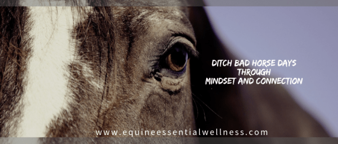 Ditch bad horse days through mindset and connection