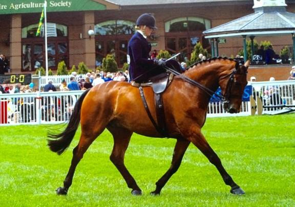 Nikki & Maille competing side saddle