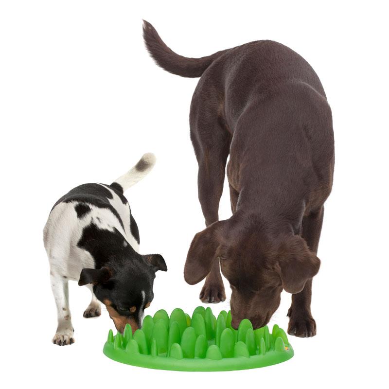 Comedero interactivo perro pequeo y mediano S sencillo  KA16