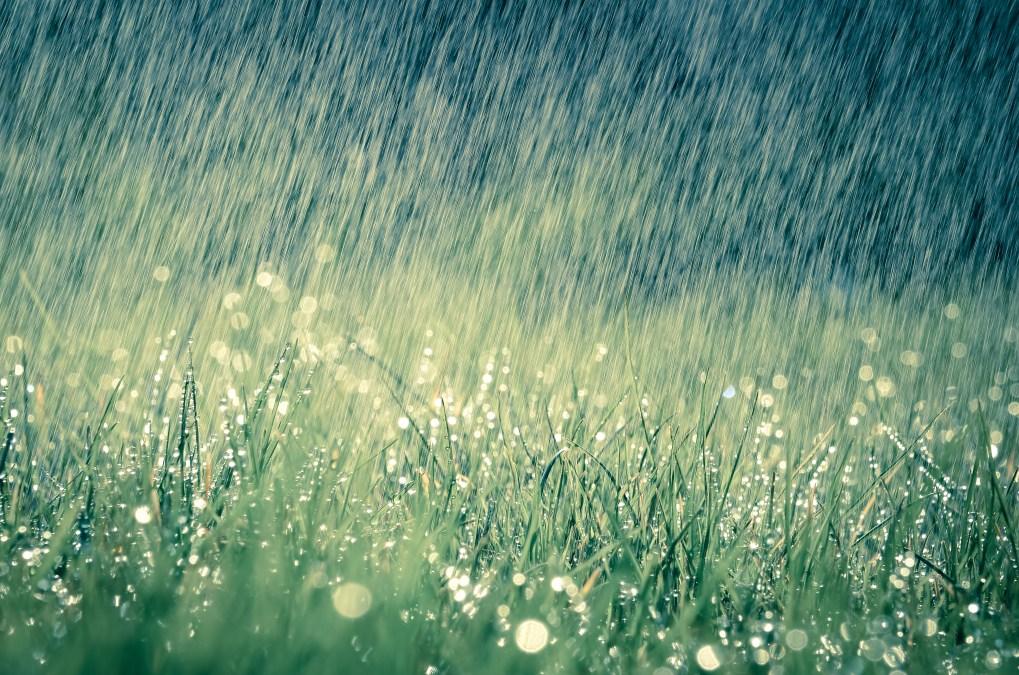 Sataa sataa ropisee