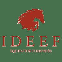Logo équitation fusionnée