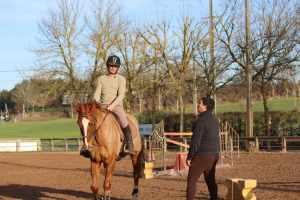 Devenir conultant expert en équitation fusionnée