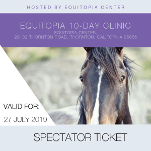 Equitopia clinic - empowering equestrians everywhere
