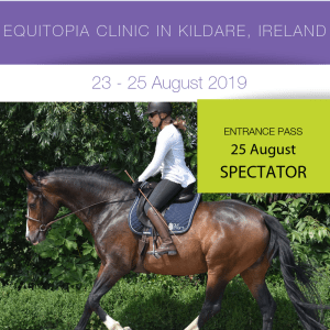 Evaluation and Riding Clinic – Ireland
