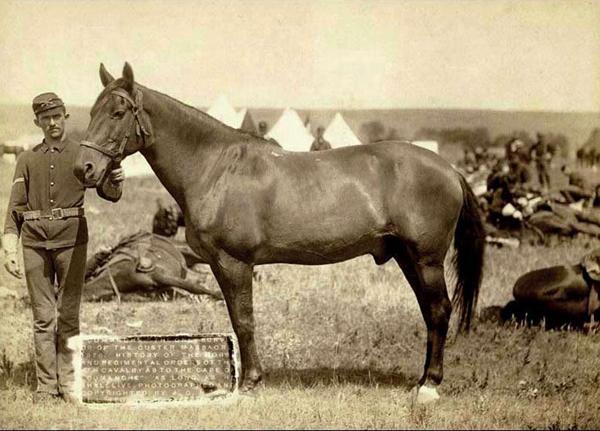 Comanche Survivor of Battle of Little Bighorn