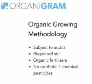 organigram-organic
