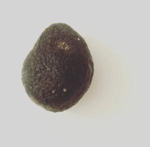 avocado maturo