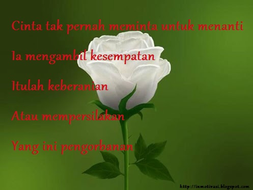 ross putih