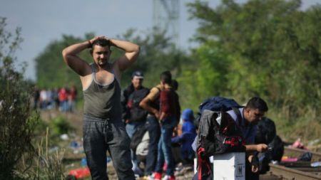 pengungsi suriah di eropa