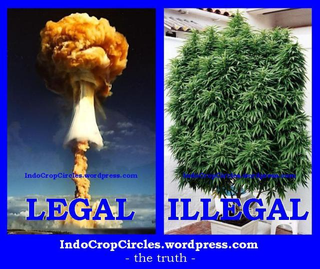 cannabis-illegal-and-nuclear-legal