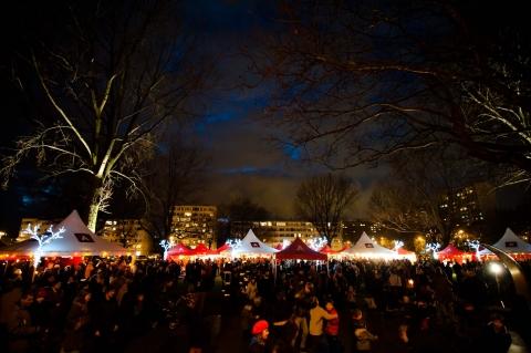 http://www.dna.be/winter/event/kerstboomverbranding