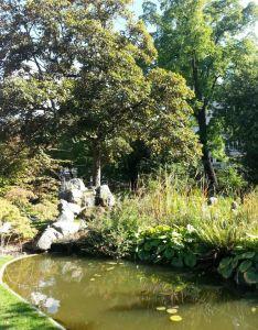 Jaradín Botánico