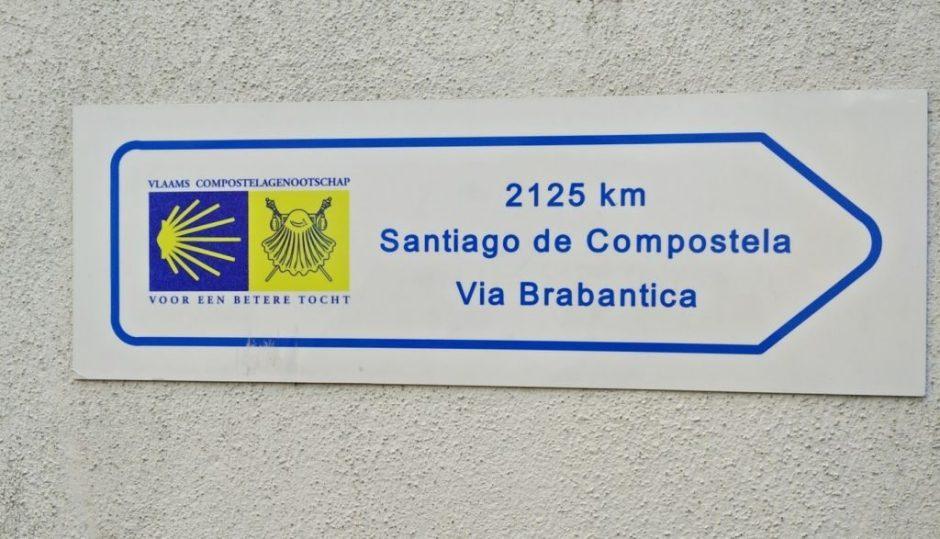 img_20161214_112116 ¡¿Pero que hace aquí el Camino de Santiago?! - IMG 20161214 112116 1024x587 - ¡¿Pero que hace aquí el Camino de Santiago?!