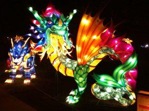 img_7599 China Lights Zoo — OFF — - IMG 7599 300x224 - China Lights Zoo — OFF —