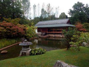 Un pedacito de Japón en Bélgica - IMG 20160917 165650 min 300x225 - Un pedacito de Japón en Bélgica