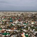 Plástico ¡Alerta! El mar no lo come
