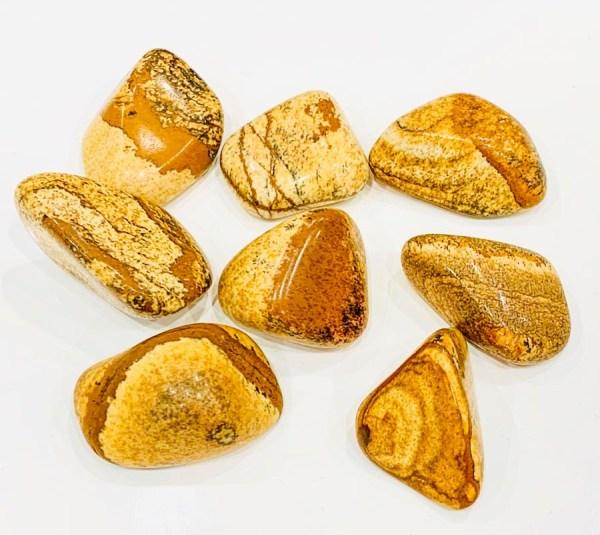 Burattati - pietra paesina - Cristalli del benessere | Erboristeria Erbainfusa Como | Shop Online