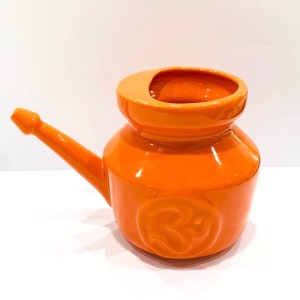 Netilota arancio grande - Dhanvantari | Erboristeria Erbainfusa Como | Shop Online