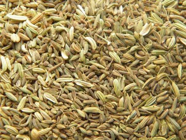 Risultati immagini per mix di semi
