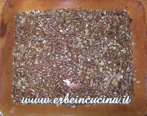 Raccolta semi di lino