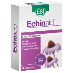 Echinaid 30 naturcaps