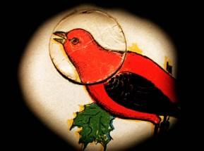 ghost-algebra-2009_red-bird