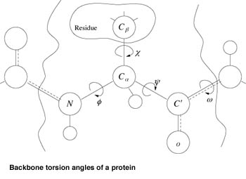 Ab Initio Methods for Protein Structure Prediction: A New