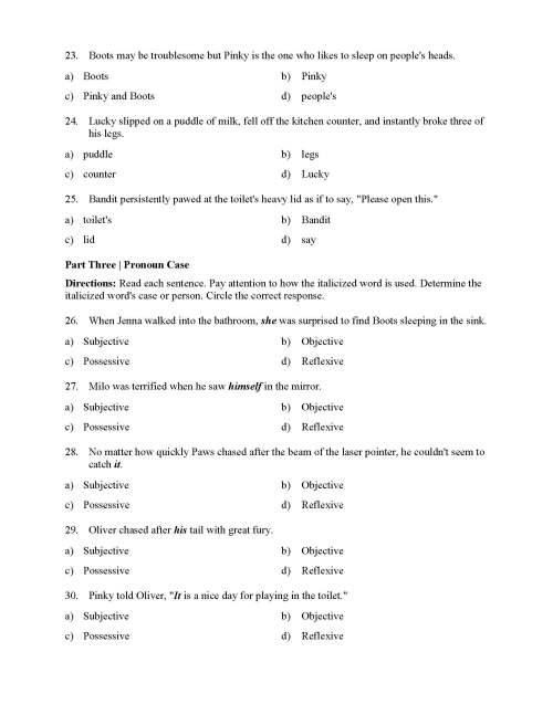 small resolution of Pronouns Test with Cats - Reading Level 2   Preview