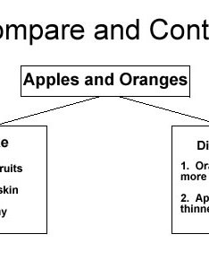Compare and contrast graphic organizer also ereading worksheets rh ereadingworksheets