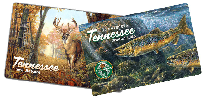 Tennessee Fishing Guide 2020