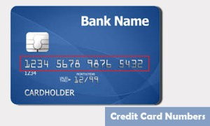 buy real debit card numbers online. www.eremmel.com