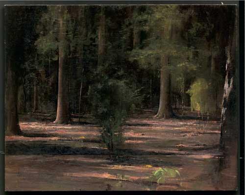אלדר פרבר - יער, 2007
