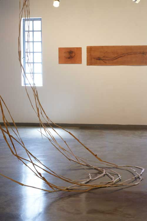 אביטל כנעני ופומיטקה קודו - מתוך התערוכה בגלריה מכון המים