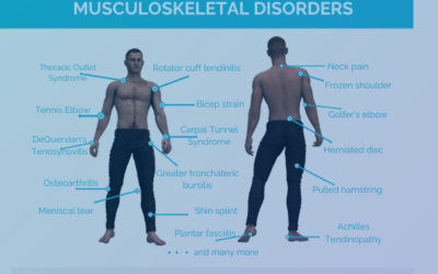 What is Musculoskeletal Disorder?