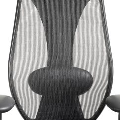 Best Back Support For Office Chair Singapore Chiavari Covers Weddings Lumbar Ergocentric