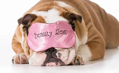 1423476417_beauty-sleep-sub
